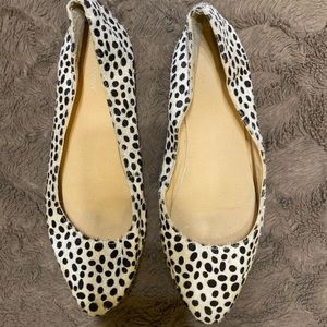 Steppin In Polka!
